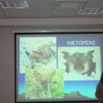 Ciekawostki ze świata przyrody ożywionej w CN1