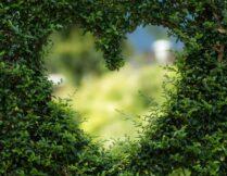 Więcej o Walentynki w Bbiliotece Online – wiersze o miłości, łamigłówki i życzenia