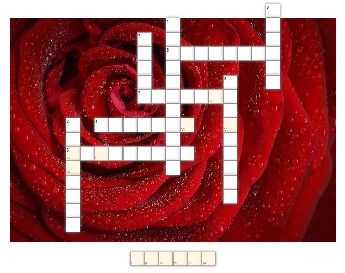 krzyżówka na tle czerwonej róży