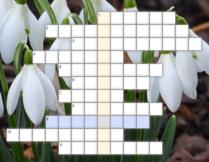 krzyżówka dla dzieci; w tle zdjęcie przedstawiające kwiaty
