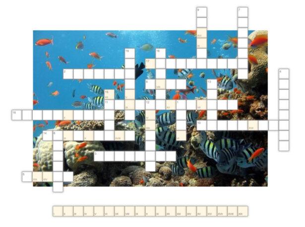 krzyżówka; w tle obrazek przedstawiający podwodną rafę koralową pełną kolorowych ryb