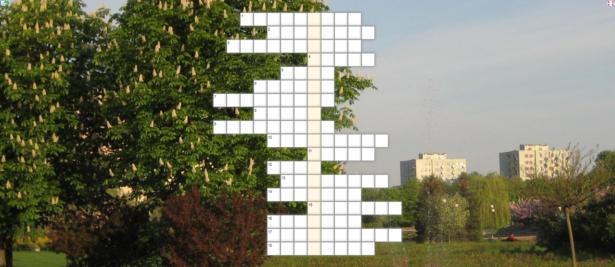 krzyżówka; w tle zdjęcie przedstawiające Park Bródnowski i okoliczne bloki