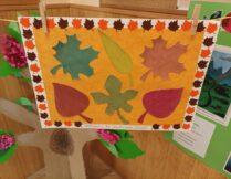 zdjęcie przedstawia prezent dla biblioteki dla dzieci i młodzieży nr 53 przy ul. Bazyliańskiej 6 od Przedszkola nr 88 Pod zielonym listkiem - obrazek z naklejonymi liśćmi jesiennymi